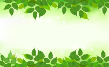 Nature background with green fresh leaves