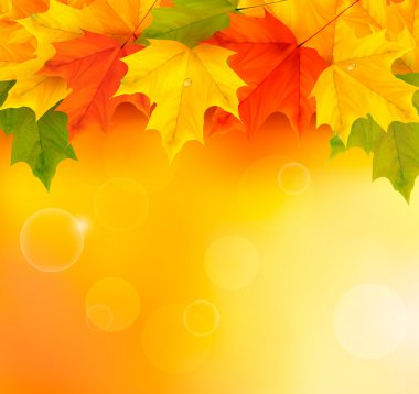Autumn background with leaves stock vector