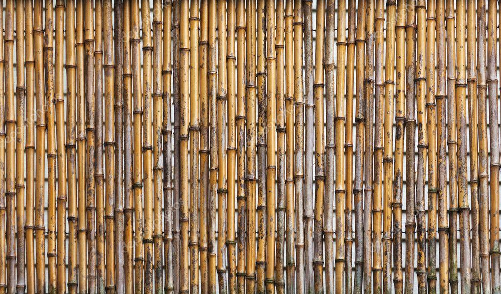 Bamboe hek stockfoto devon 11402800 - Bamboe hek ...