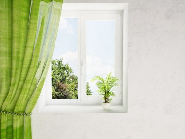 A plant on the window