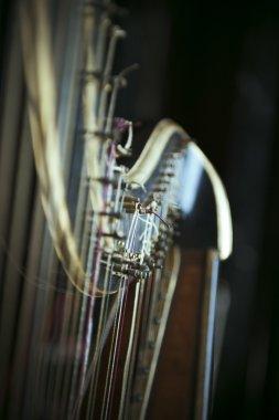 Harp detail