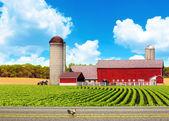 strada di campagna americana con cielo blu