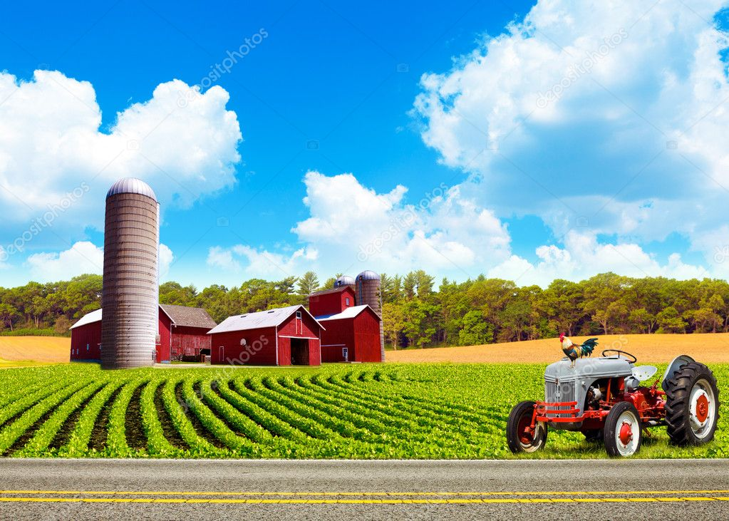Country Farm Landscape With Tractor