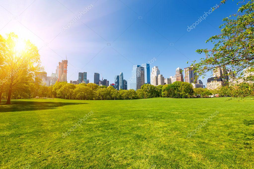 Central Park A Día Soleado — Foto