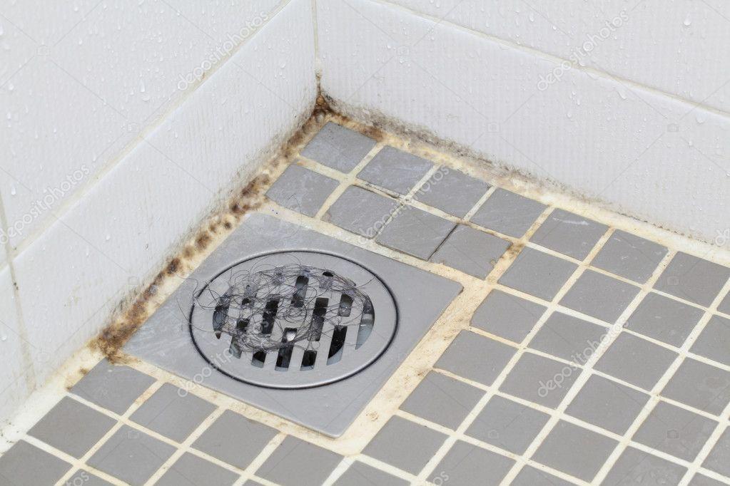 Moisissure dans la salle de bain photographie vichie81 11459753 - Moisissure noire douche ...