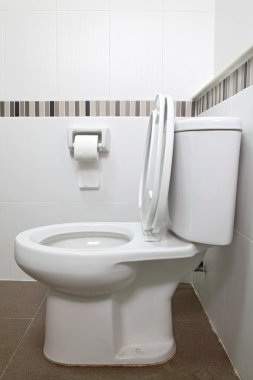 Toilet seat and tissue
