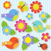 Fotografia set di fiori e uccelli