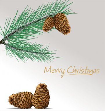 Pine branch with cones Christmas background