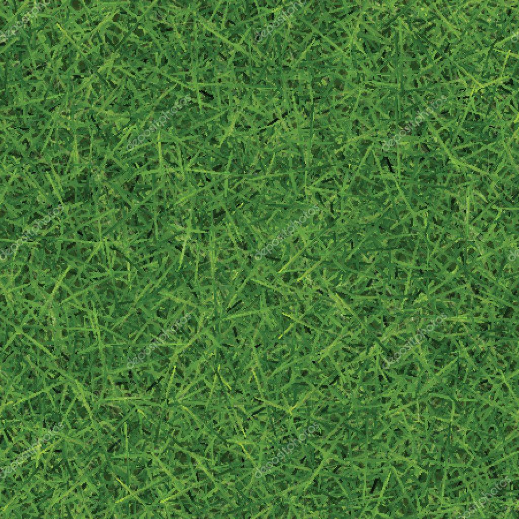 Fresh green grass bg