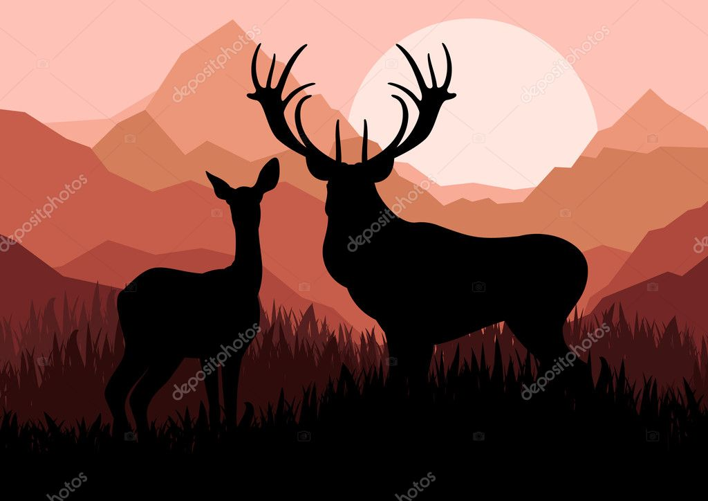 Deer family couple silhouettes in wild mountain nature landscape