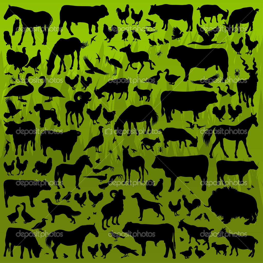 Farm animals detailed silhouettes illustration collection backgr