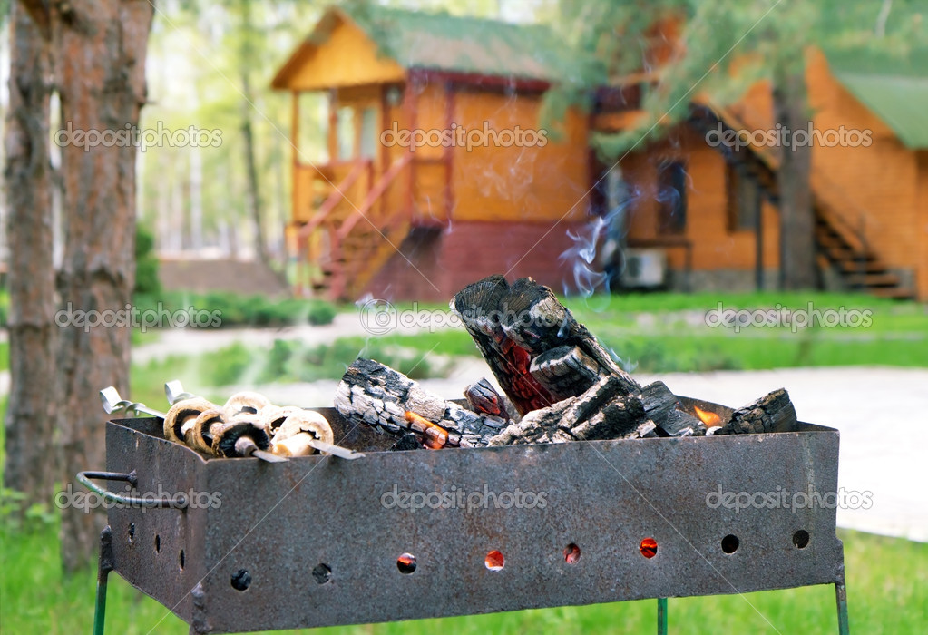 Mushrooms in smoke on bbq grill