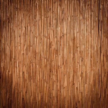 Beautiful Japanese bamboo background