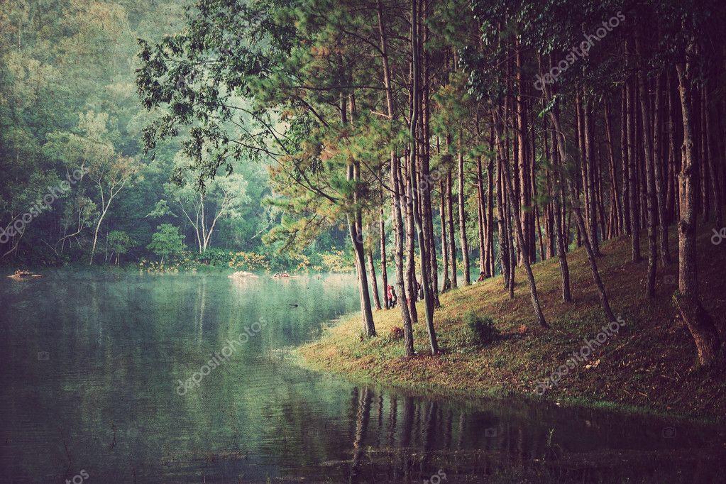 Фотообои Лесной фон ,винтажный стиль