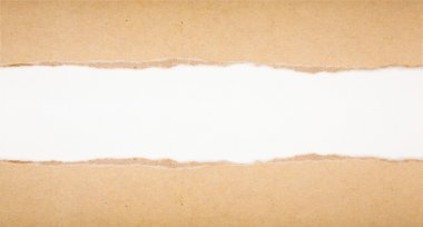 Ripped in brown paper on white background