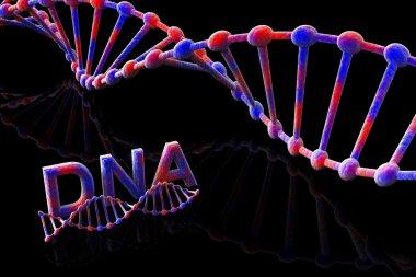 DNA-3d