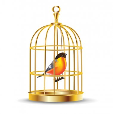 Golden bird cage with bird inside isolated stock vector