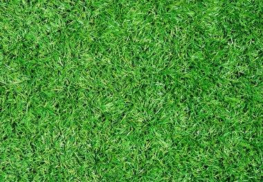 Beautiful green grass texture from stadium