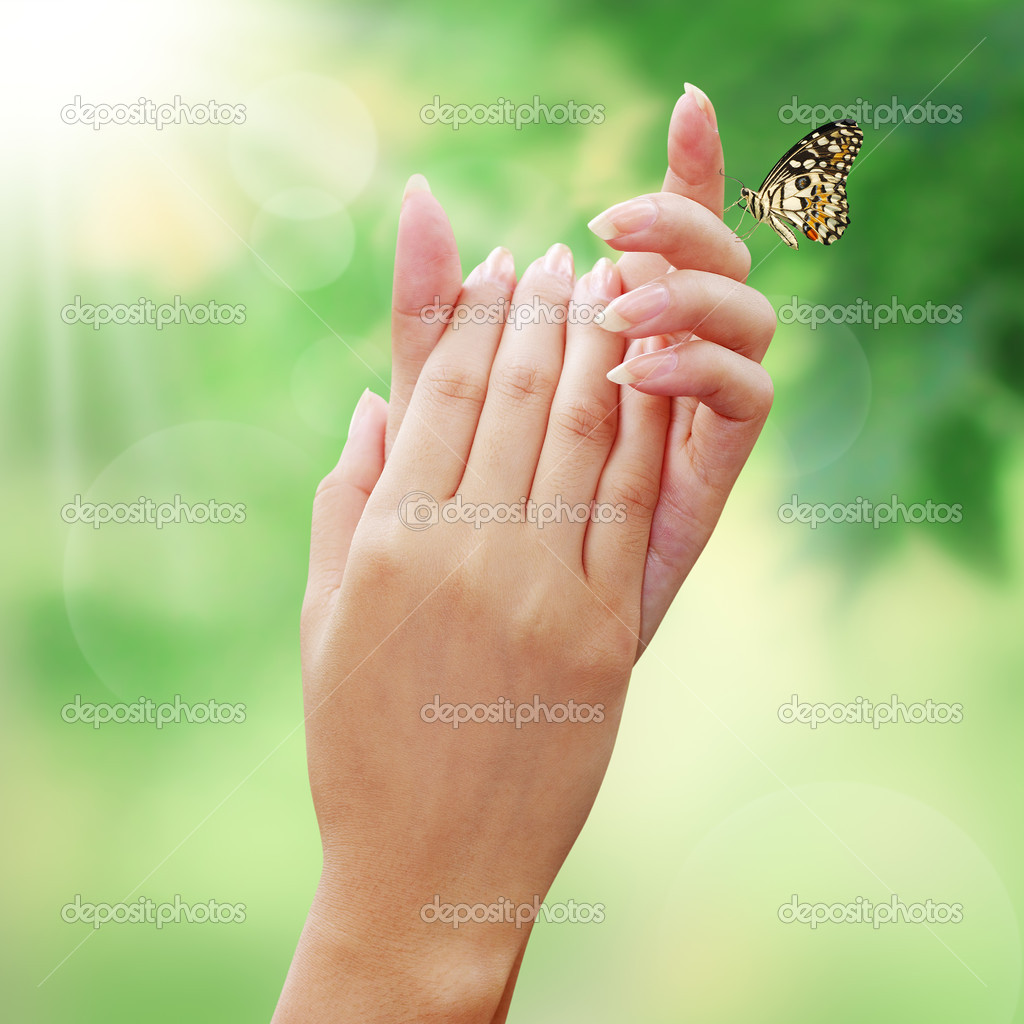 Butterfly in woman hands