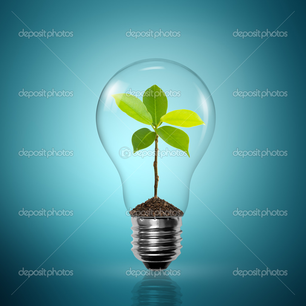Bulb light with tree inside