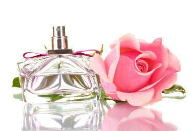 Perfume bottle and pink rose isolated on white
