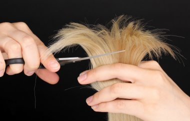 Shiny blond hair in hairdresser's hands isolated on black