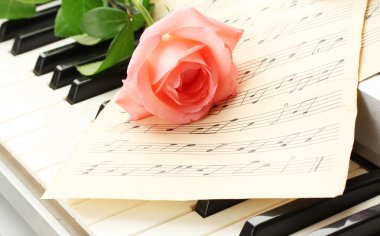 Background of piano keyboard with rose