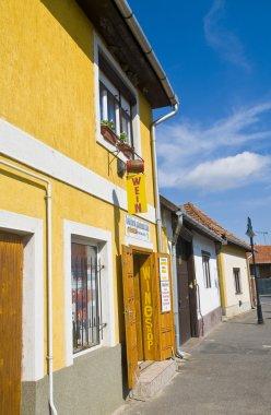 House in Tokaj