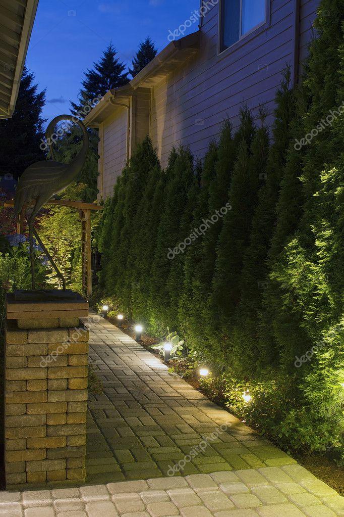Фотообои Путь двор сад ночью