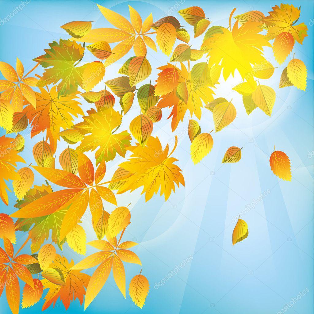 秋の紅葉、自然の背景 — ストックベクター © silvionka #11421162