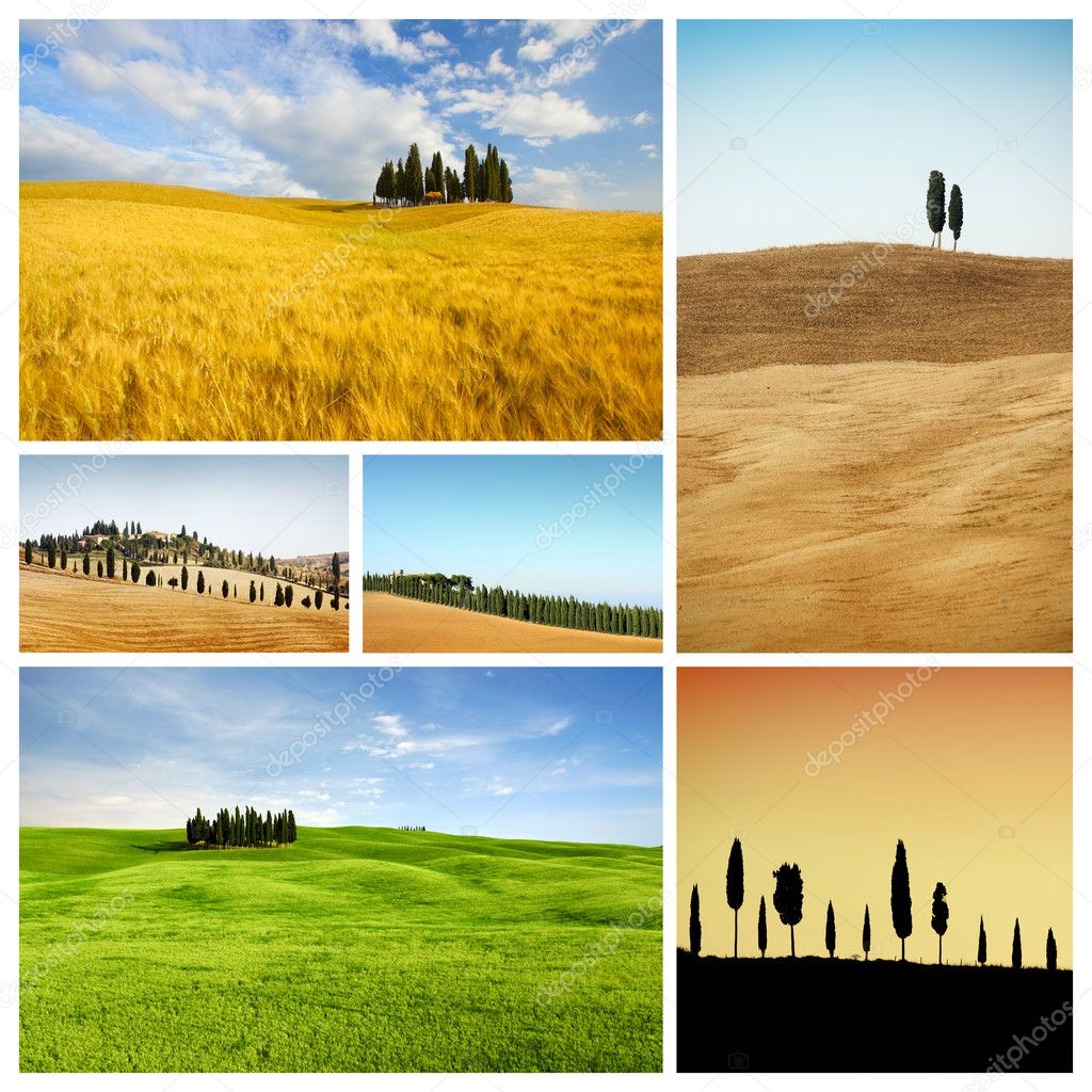 Tuscany landscape collage