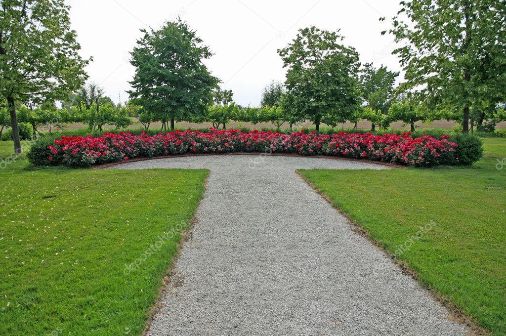 di rose e un piccolo ciottolo nel giardino all'italiana ? foto ... - Piccolo Giardino Allitaliana