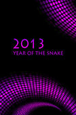 2013 new year - vector snake background