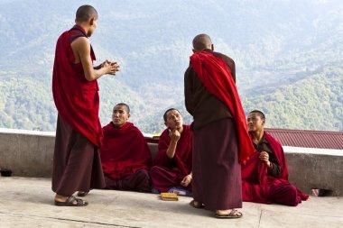 MONKS DISCUSSING IN NALANDA BHUDDIST COLLEGE - PUNAKHA - BHUTAN