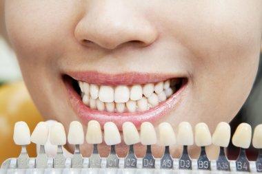 Examining teeth 1