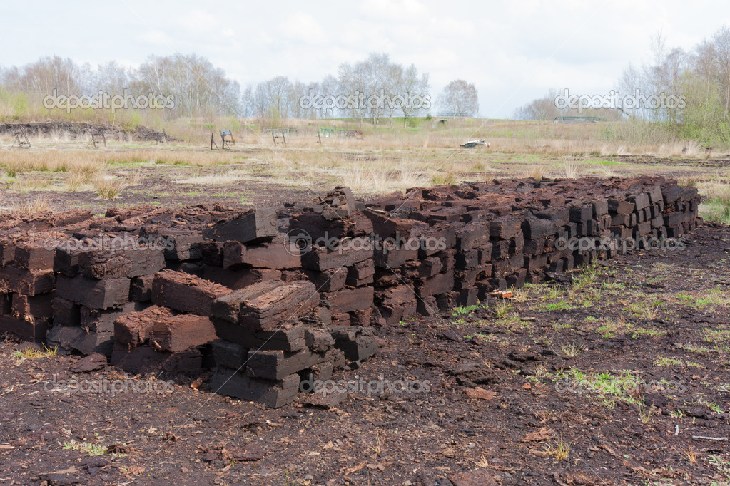Peat digging in Dutch rural landscape