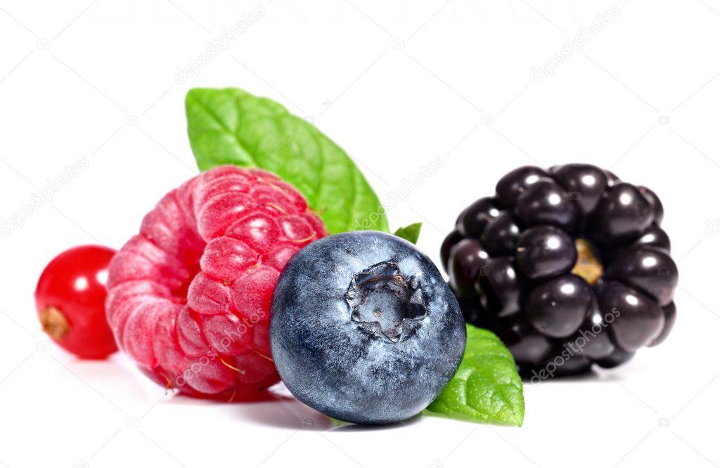 Berry fruit