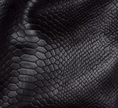 hadí kůže pozadí