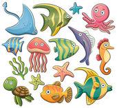 collezione di animali del mare