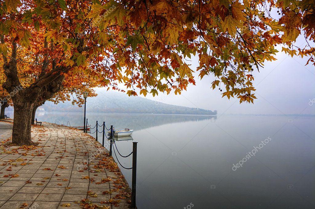 Фотообои Landscape in fall autumn