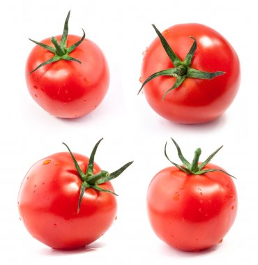 Collection of tomatoes with water drops