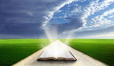 Open bible in field.