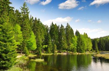 Small Arber Lake - Germany