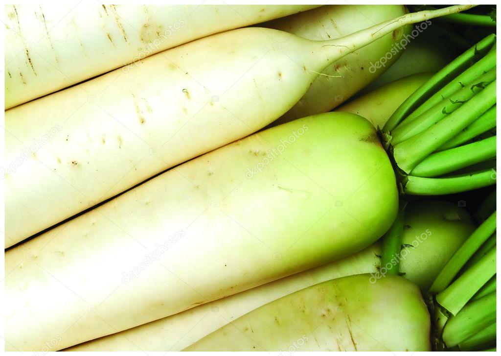 The fresh horseradish