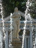 fontána v petrodvorets