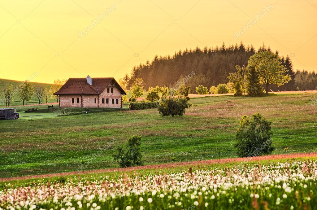 Spring meadow with cottage