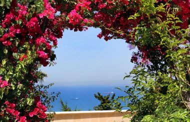 Landscape with flowers and the sea