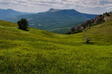 Mountain plateau, Crimea, Ukraine