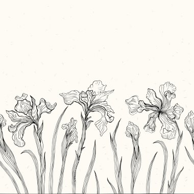 Abstract floral background. Iris.