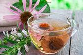 Fotografie Herbal Tea